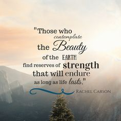 """""""Those who contemplate the beauty of the earth find reserves of strength that will endure as long as life lasts. Nature Words, Nature Quotes, My Children Quotes, Rachel Carson, Sleep Solutions, Life Questions, Set Me Free, Wonder Quotes, Mental Health Quotes"""