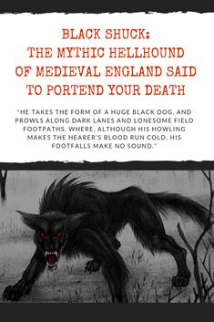 Black Shuck: The Mythic Hellhound Of Medieval England Said To Portend Your Death
