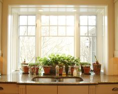 Windows, Mesmerizing Box Bay Window With Brown Granite Kitchen Table Countertop Also Classic Sink And Faucet Design Also Beautiful House Plants On Pot: Admirable Box Bay Window for New Experience in the House