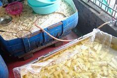 Phát hiện cơ sở chứa 5 tấn măng bốc mùi hôi thối ở Nghệ An - http://www.daikynguyenvn.com/viet-nam/phat-hien-co-so-chua-5-tan-mang-boc-mui-hoi-thoi-o-nghe-an.html