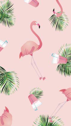 500 Wallpaper Flamingo Hitam HD