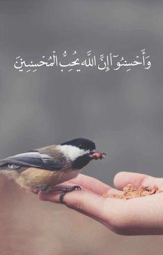 Allah Quotes, Muslim Quotes, Quran Quotes, Arabic Quotes, Arabic Words, Beautiful Islamic Quotes, Beautiful Prayers, Islamic Inspirational Quotes, Islamic Qoutes