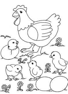 Alot Chicken Coloring Pages from Animal Coloring Pages category. Printable coloring pages for kids that you can print out and color. Have a look at our collection and print the coloring pages for free. Chicken Coloring Pages, Farm Animal Coloring Pages, Preschool Coloring Pages, Easter Coloring Pages, Free Printable Coloring Pages, Coloring Book Pages, Coloring Pages For Kids, Coloring Sheets, Chicken Drawing