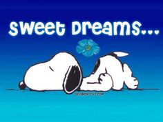 Snoopy.  Sweet dreams