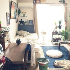 Overview/観葉植物/ダイソー/ポスター/クッション/一人暮らし...などのインテリア実例 - 2015-09-07 01:24:30