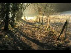 Eva Cassidy ~ 'Autumn Leaves' ... her usual gorgeous version of this Fall…