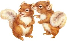 Animated Gif by Nancy Hayes Parks, Squirrel Pictures, Les Gifs, Gif Photo, Couples Images, Clipart, My Images, Animated Gif, Animation