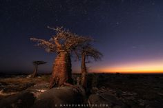 Between Night and Day by Mark Dumbleton on 500px