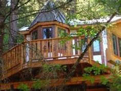 Tree House Hotel Oregon - Bing images