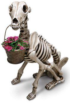 Cool Finds: SKEL-E-DOG Planter