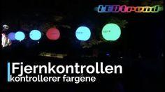 Store 1m ballonger fra 799- Perfekt til hagefest fest bassengfest festival og all annen festligheter.Ballongene tåler en trøkk sjekk ut videoen da vell! #ledtrend #fest #ledparty #vors #champis #party #partyplanner #festligheter #festival #hjemmefest #dekor #pynt #festpynt #selskap #selskapsbord #ballonger #ledballonger #arrangement #kontorfest #interiør #interiørdetaljer #balloons #ballonger #ballongeritaket #interiordesign #interiormagasinet