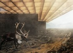 Deagan McDonald and Kelsey Nilsen receive 1st place in Iceland Trekking Cabins Competition | The John H. Daniels Faculty of Architecture, Landscape, and Design