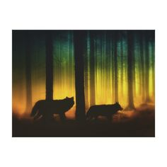Forest Spirits Canvas Print http://www.zazzle.com/forest_spirits_canvas_print-192911634597265502?rf=238312613581490875