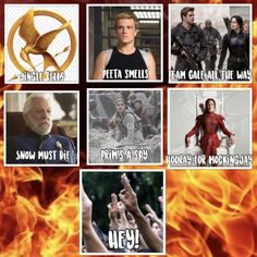 You might not agree with the team Gale part, but everyone who read the book understands the connection between Gale and Katniss Gale Hunger Games, Hunger Games Memes, Team Gale, Gale Hawthorne, Hannah Rose, Mockingjay, Book Fandoms, Jingle Bells, The Book