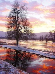 ✯ Winter Sunset