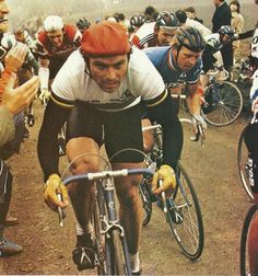 Bernard Hinault – Amstel Gold Race 1981 – Sport is lifre Velo Vintage, Vintage Cycles, Amstel Gold Race, Paris Roubaix, Cycling Art, Art Pictures, Racing, Badger, Retro