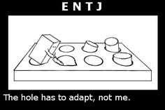 square peg in round hole: ENTJ #personality #MyersBriggs #MBTI