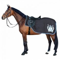 looks a bit weird not something I would put on my horse lol:)
