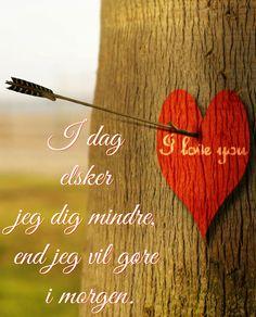 Elsker dig