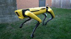SpotMini RoboDog I want :) - Panah Rad - Google+