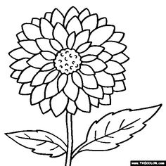 Dahlia Flower Online Coloring Page. More flower coloring pages. Flower Coloring Sheets, Printable Flower Coloring Pages, Food Coloring Pages, Online Coloring Pages, Mandala Coloring Pages, Free Coloring, Coloring Books, Hand Coloring, Adult Coloring