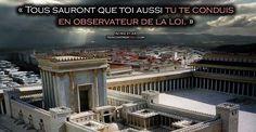 La réponse de l'apôtre Paul face à la Loi de Moïse et aux faux docteurs - Paracha Nasso -