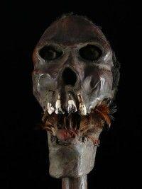 crânes rituels, crânes trophées - Galerie Bruno Mignot