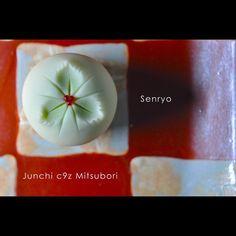 """""""一日一菓 「千両」 煉切 製 wagashi of the day """"Senryo"""" 本日は「千両」です。 少し早い気もしますが年末定番の和のクリスマスカラーです。 千両や万両は有名ですが、 一両から十両、百両と実の多さ等によって段階的に種類が異なるそうです。 Today is """"Senryo"""". I…"""""""