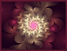 My Rose by Golubaja on deviantART
