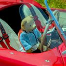 Cool and Funny Images, Collection,Artworks from Artists all over the world, BEARY NICE CAR by Catspaws