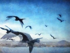 ~Textura N°171 Aves~ explore 11-7-2012, via Flickr.   #texture #blue #gold #grey