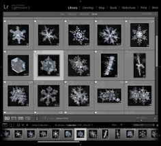 Why Lazy Photographers Should Use Lightroom Smart Collections