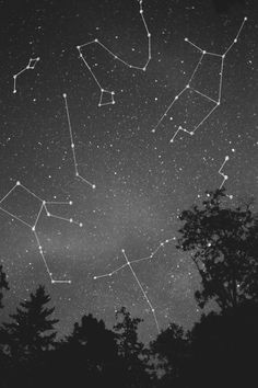 """You are like the night, with its stillness and constellations. Your silence is that of a star, as remote and candid"" -Like For You To Be Still, Pablo Neruda"