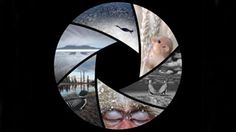 early 2014 (closed) Natural History Museum wildlife photographer of the year