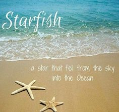 Beach Saying on CereusArt: Starfish - A Star that fell from the sky into the ocean. Sunset Beach, Beach Bum, Ocean Beach, Beach Relax, Beach Waves, Ocean Quotes, Water Quotes, Summer Quotes, Summer Sayings