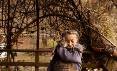 """""""300 Cats, Yes. Craziness, No"""" by Anne Raver for The New York Times. Siglinda Scarpa first fell in love with animals and began communicating with them at age 7 when she nursed a tiny kitten back to life. She's no crazy lady living among mountains of newspapers and a pack of yowling cats. She's been called the Mother Teresa and Albert Schweitzer of animals. A powerful manifestation of Divine Love in human form. Click the pic to warm your heart."""