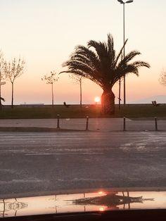Pendik sahil akşam günbatımı