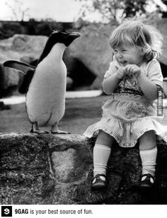 Hey Cindy...  how about penguins?