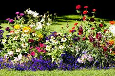 Try a mixed border. | 15 Rules All First-Time Landscapers Should Follow