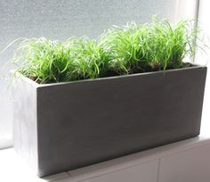 Grey Concrete Planters