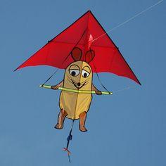 A hang-gliding peanut? A wonderful humorous kite! Basically a Delta kite with a broad tail. Kite Building, Kite Store, Chinese Kites, Kite Tail, Delta Kite, Kite Designs, Kite Making, Go Fly A Kite, Hang Gliding