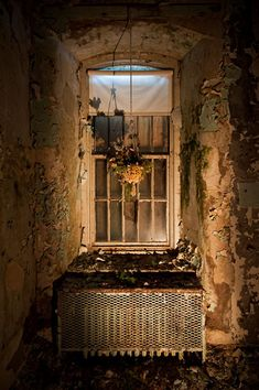 A lifeless plant hangs in an otherwise empty and dilapidated patient room at Greystone Psychiatric Hospital. Lit mostly by handheld flashlight with a trace of daylight seeping into the dark room through a boarded up window.