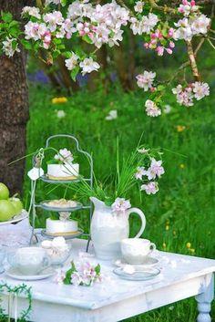 Spring tea, I love the more natural overgrown garden