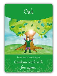 Oak - Bach Flower Oracle Card by Susanne Winberg. Message: Combine work with fun again!