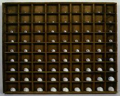 "Kyoung Ae Cho Ocean Drawer, 1992 shells, an old typeset drawer 13 1/4"" x 16 1/2"