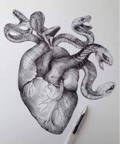 Snakes & hearts. Artist Unknown.