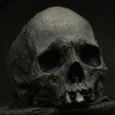 Skull ring  Decayed Mid size half jaw silver mens by Bakogiorgis