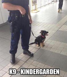 """It's spelled """"kindergarten"""" but its still funny"""