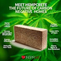 "155 Likes, 15 Comments - InsprMe (@insprme) on Instagram: ""The New #Green #Building #Trend is Bricks of #Cannabis. Literally. @colorado_hemp_project…"""