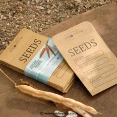 Seed Storage Envelopes - buy blank ones from newsagents.